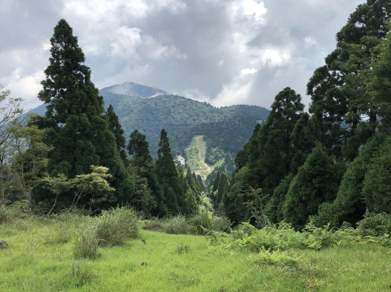 武奈ヶ岳 難関の八淵の滝ルートで攻略!_b0200358_13015316.jpeg