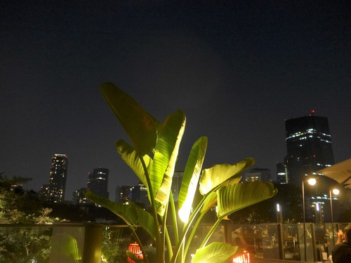 六本木「HAL YAMASHITA 東京」へ行く。_f0232060_15554482.jpg