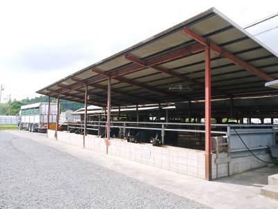 お待たせしました!熊本県産の黒毛和牛を100%のハンバーグステーキ!次回は8月20日(木)に出荷します!_a0254656_18075196.jpg