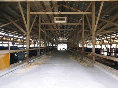 お待たせしました!熊本県産の黒毛和牛を100%のハンバーグステーキ!次回は8月20日(木)に出荷します!_a0254656_18213662.jpg