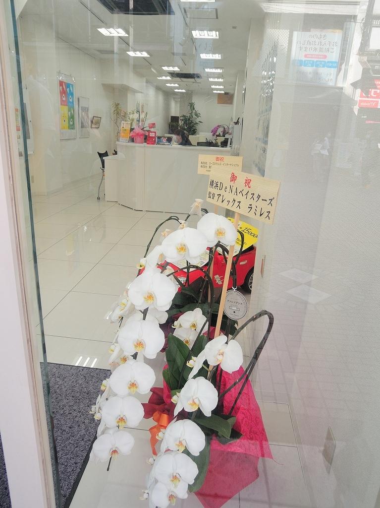 ある風景:Isezakicho,Yokohama@Jun 2020 #13_c0395834_23130749.jpg