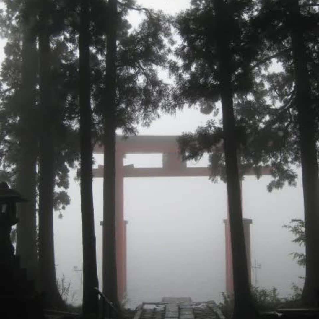 200818 七十二候 蒙霧升降 (ふかききりまとう)_f0164842_22325288.jpg