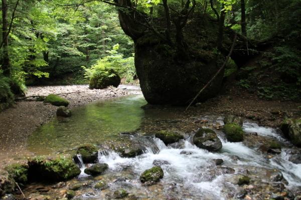 日本の原風景に会いに行きました_b0238249_20272401.jpg