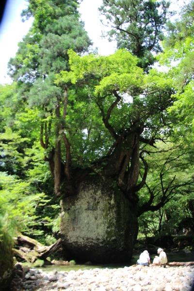 日本の原風景に会いに行きました_b0238249_20302277.jpg