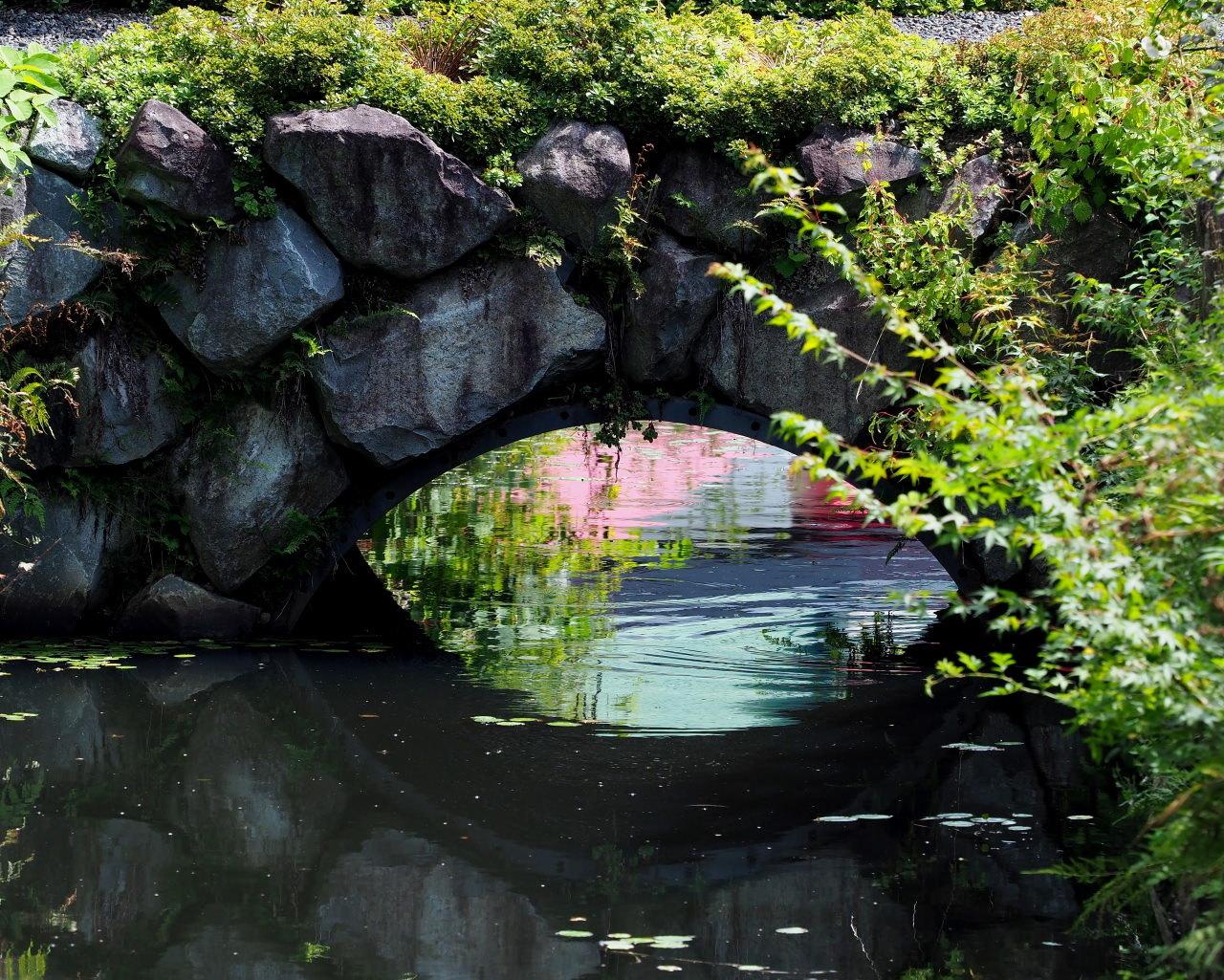軽井沢レイクガーデンで 猛暑日にも忍び寄る秋が・・・_c0305565_17405691.jpg
