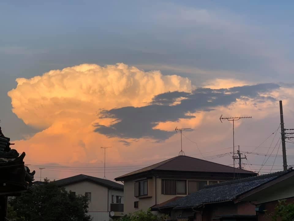 雲&まおちゃん_e0040673_09033752.jpg