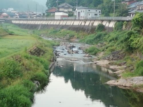 2020/8/18     水位観測  (槻の木橋より)_b0111189_05351470.jpg