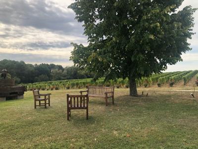 Bordeaux France september 2019 ⑧ Sauternes chateau de Fargues_a0036499_21562937.jpg