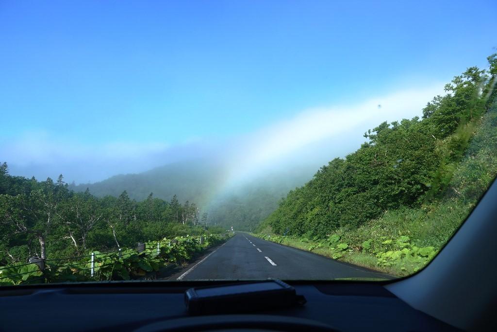 北海道探鳥地放浪の旅  画像編_b0227552_19311471.jpg