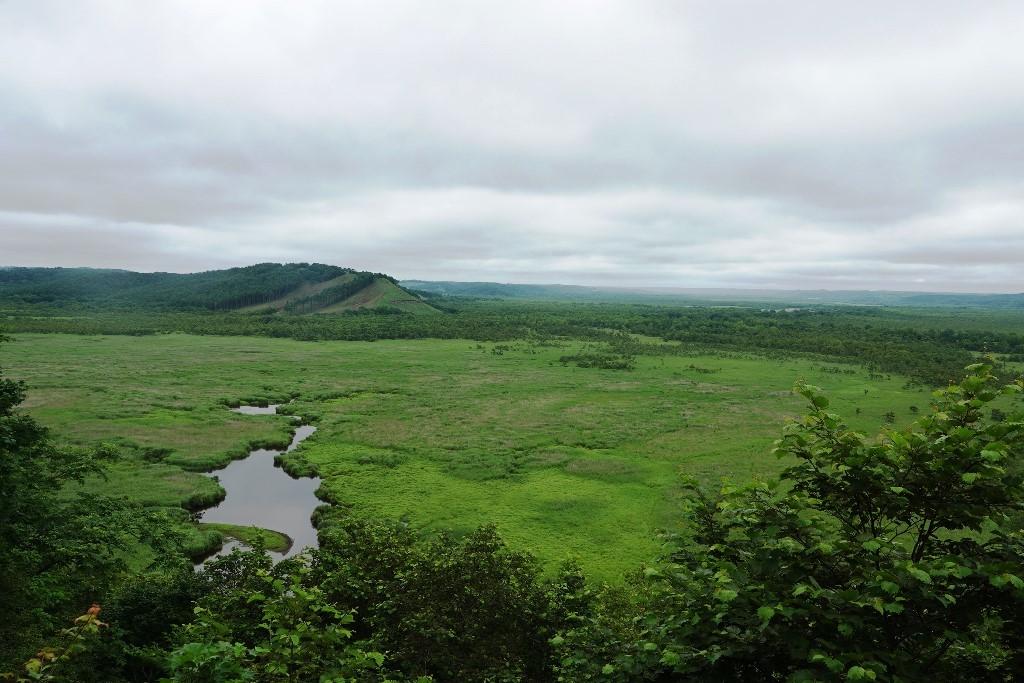 北海道探鳥地放浪の旅  画像編_b0227552_19404217.jpg