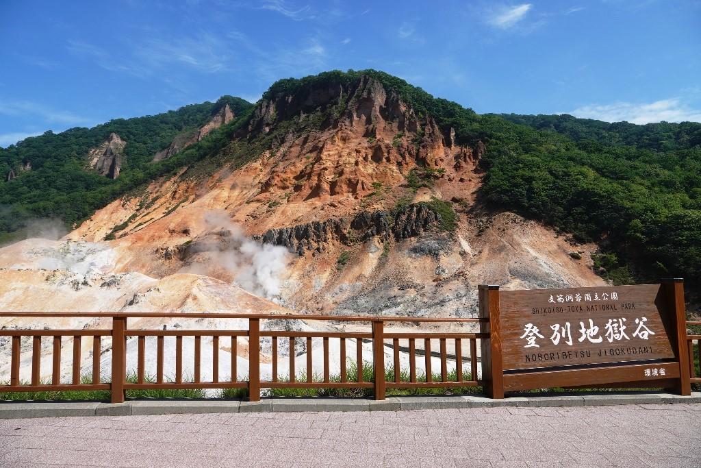 北海道探鳥地放浪の旅  画像編_b0227552_19404335.jpg