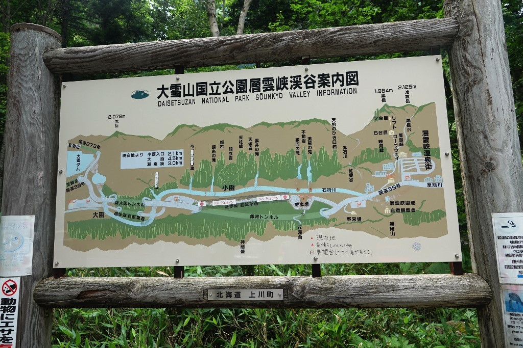 北海道探鳥地放浪の旅  画像編_b0227552_20564912.jpg