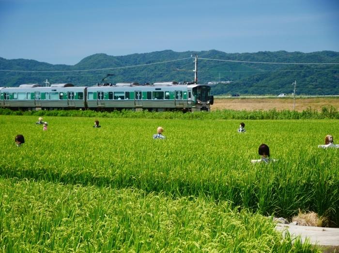 田園風景・案山子  2020-08-23 00:00_b0093754_23142389.jpg