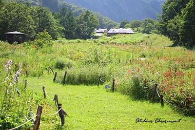 白馬山岳リゾート その②FIELD SUITEでグランピング_f0229759_00352837.jpg
