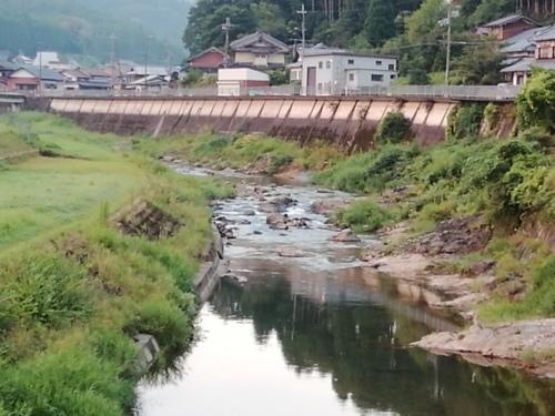 2020/8/19     水位観測  (槻の木橋より)_b0111189_05450886.jpg