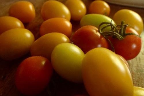夏庭収穫_e0134713_18432102.jpg