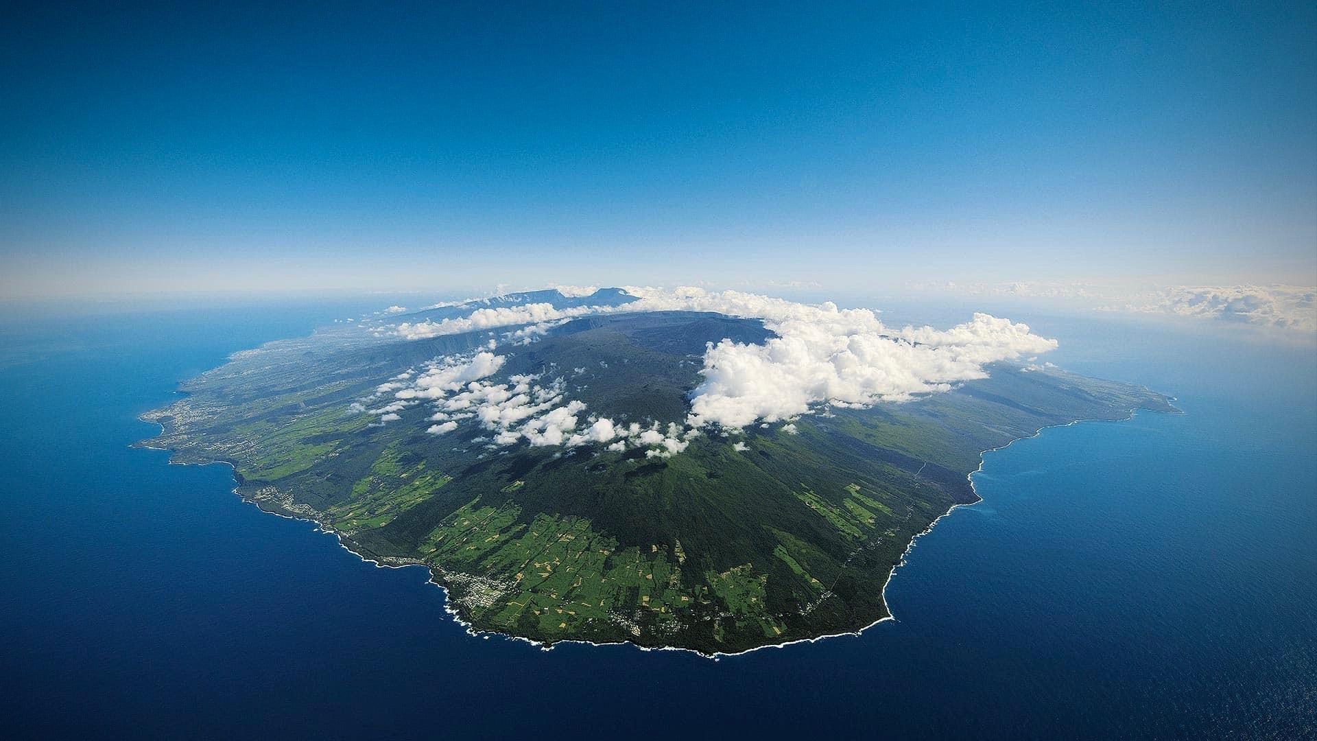 Réunion Vanille_f0057849_19025205.jpg