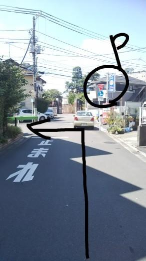 【川あそび】開催場所までの道のり(2020)_c0120851_11184767.jpg