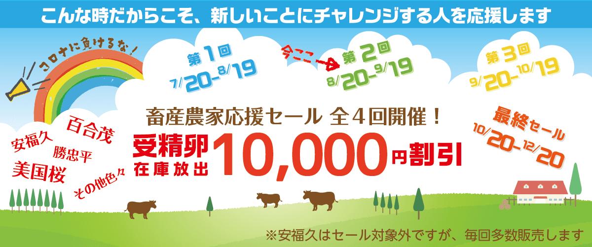 『第2回 畜産農家応援セール』本日よりスタート!_c0126281_10400633.png