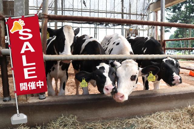 『第2回 畜産農家応援セール』本日よりスタート!_c0126281_11174749.jpg