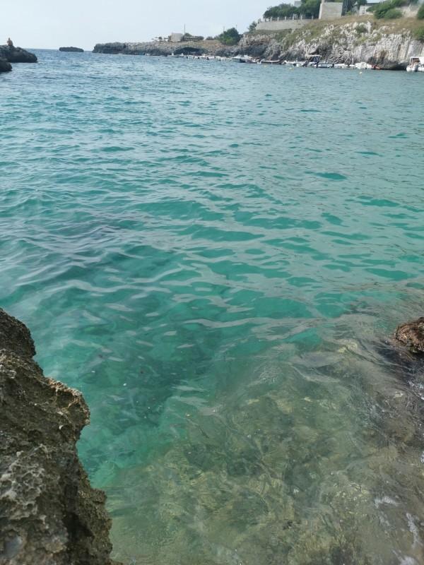エメラルドグリーンの入り江と丘の上の塔~プーリア滞在記_f0106597_04531975.jpg