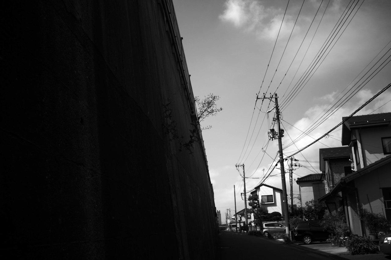 朝の散歩、夕暮れの散歩_c0082800_22513547.jpg