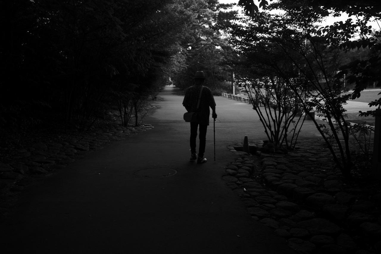 朝の散歩、夕暮れの散歩_c0082800_22514600.jpg