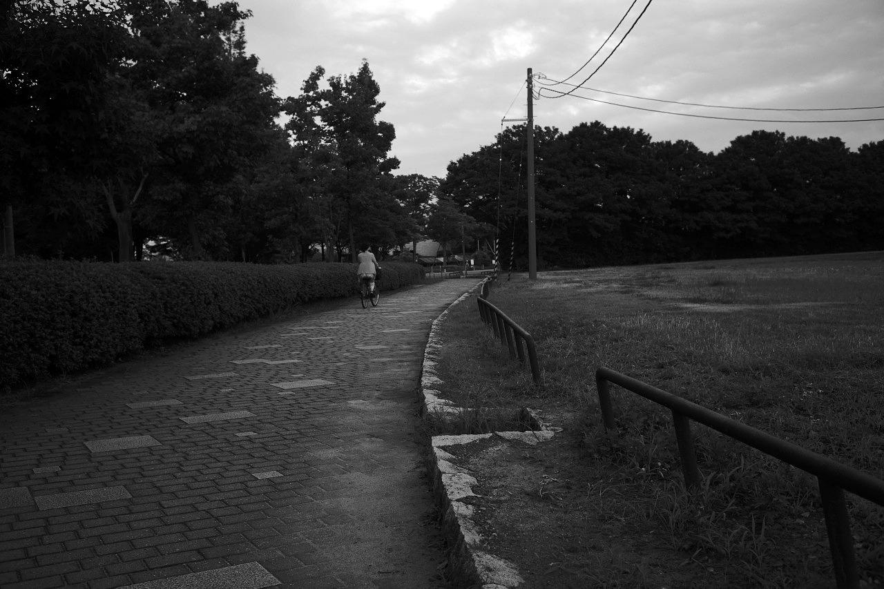 朝の散歩、夕暮れの散歩_c0082800_22514750.jpg