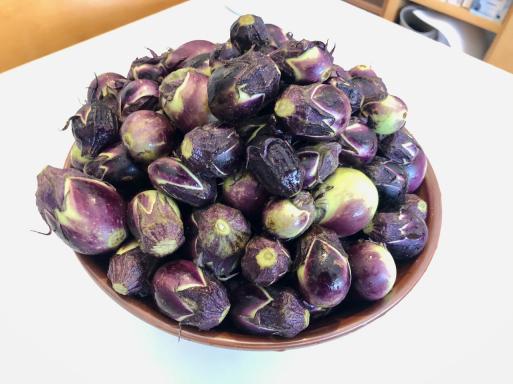 夏は枝豆とナスでしょう。_d0057843_16040095.jpeg