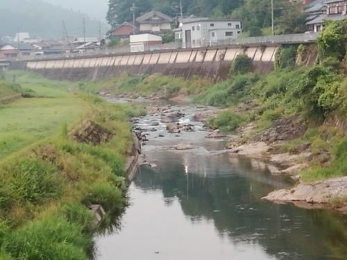 2020/8/21     水位観測  (槻の木橋より)_b0111189_05342311.jpg