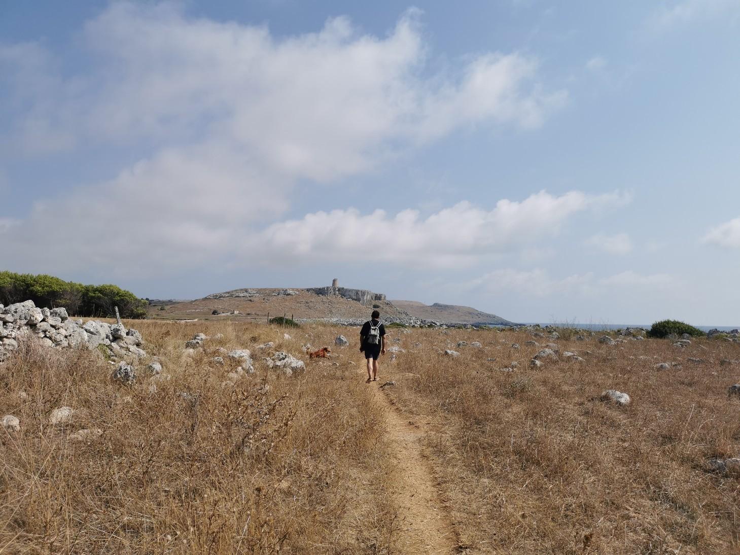エメラルドグリーンの入り江と丘の上の塔~プーリア滞在記_f0106597_03362021.jpg
