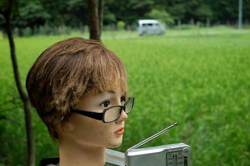 夕顔とわたし・・・くつきの森で薪ネット作業例会_d0005250_182432.jpg