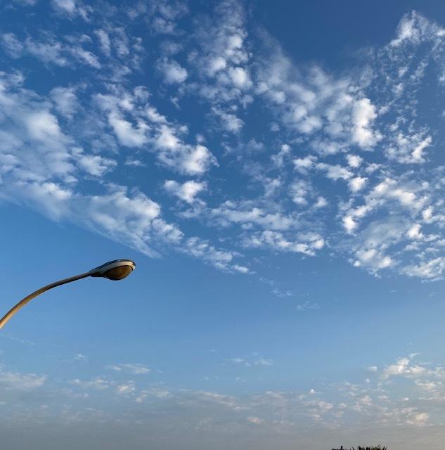 walking   暑さが少し和らいだ朝に♪_a0165160_09543852.jpg