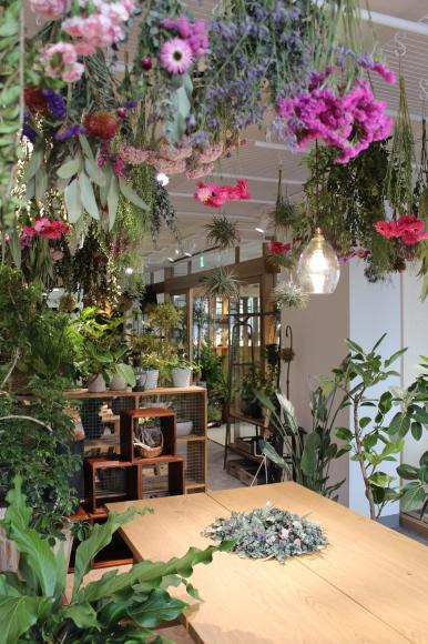 hare-hana plants + さまにて花器のお取り扱い_a0162481_16062733.jpg