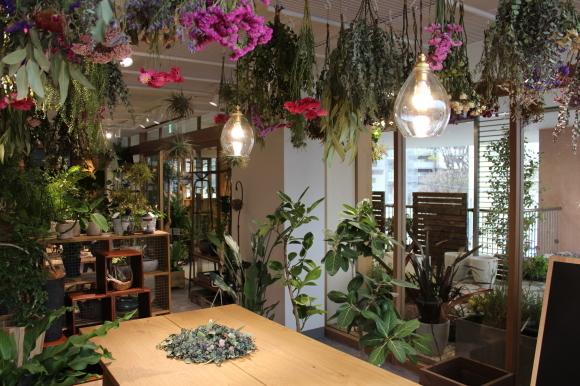 hare-hana plants + さまにて花器のお取り扱い_a0162481_16080574.jpg