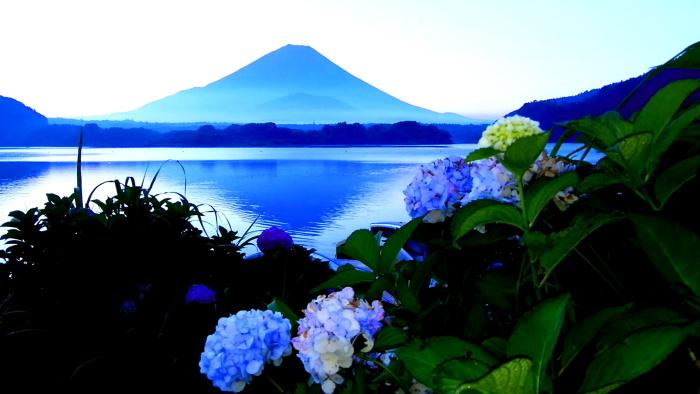 令和2年8月の富士(2) 精進湖畔の夜明け富士 _e0344396_10432614.jpg