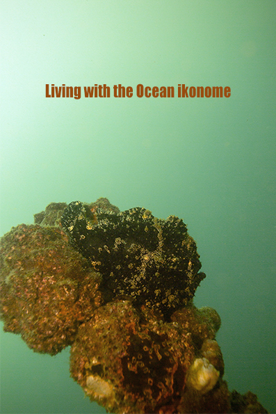 Living with the Ocean♡_e0075145_19541796.jpg