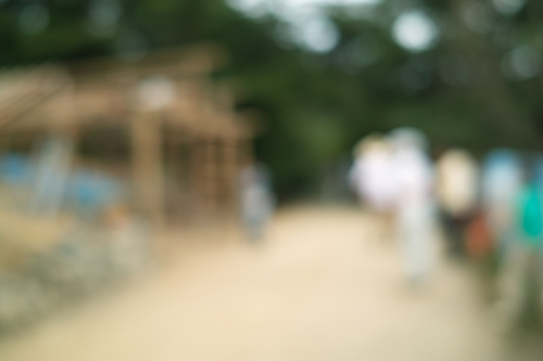カメラは壊れ、エキサイトはアクセス不能!・・・くつきの森で餅まき_d0005250_17532026.jpg