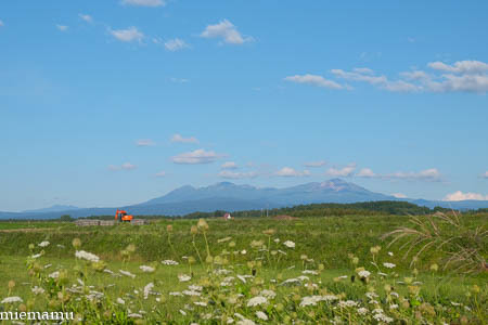 残暑の就実の丘からの大雪連峰~8月の就実_d0340565_19492106.jpg