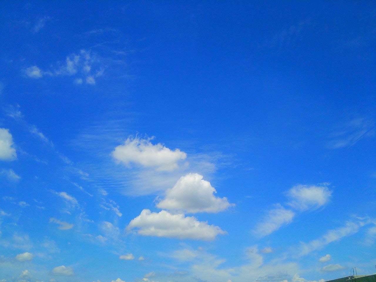 尋常じゃない暑さも和らぎ_e0341430_08344300.jpg