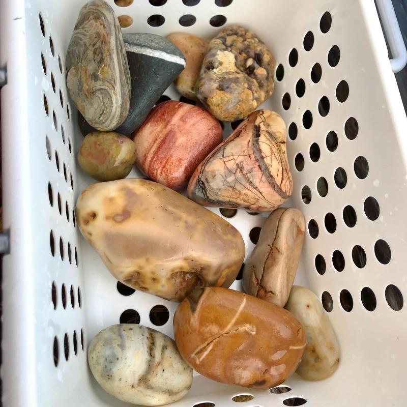 【海で拾った石】 真夏の石拾い その1_f0169147_16162823.jpg