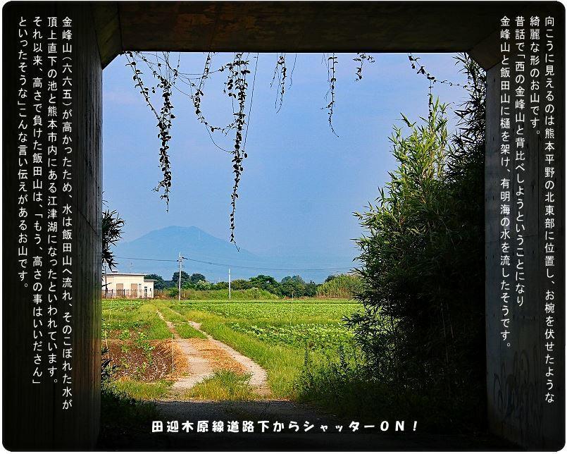 赤とんぼに遇えた!登ってみたい飯田山向こうに…散歩は楽し_d0102968_15105454.jpg