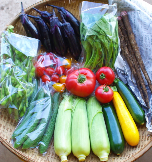 今週の野菜セット(8/25~8/29着)_c0110869_13430434.jpg