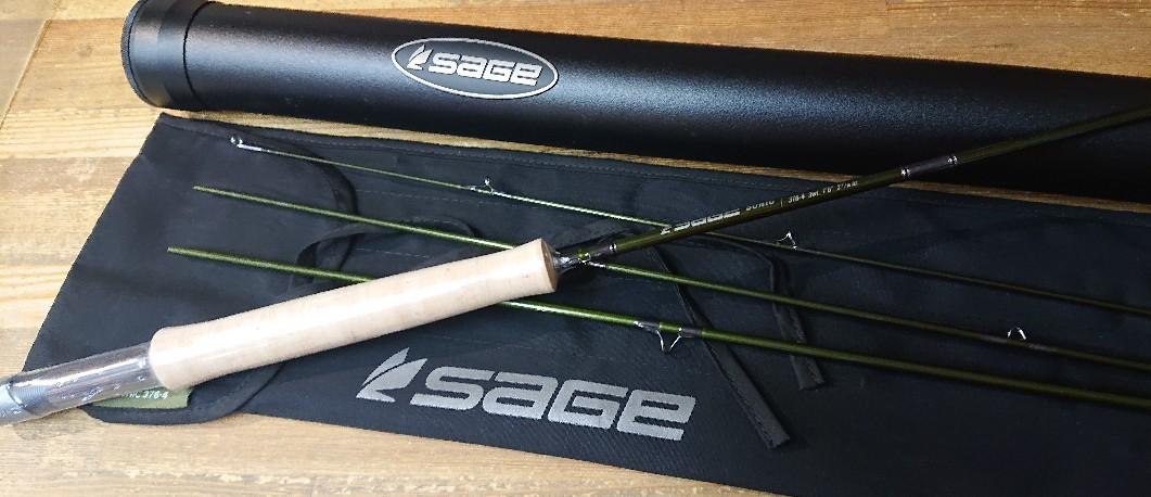 SAGE(セージ)新製品、SONIC 376-4が入荷しました。_e0272349_12010507.jpg