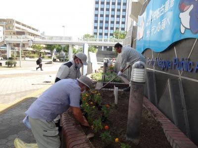 ガーデンふ頭総合案内所前花壇の植替えR2.8.24_d0338682_09090226.jpg