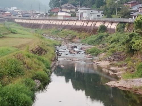 2020/8/25     水位観測  (槻の木橋より)_b0111189_05351590.jpg