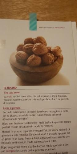 今年もnocino!_d0351096_19275868.jpg