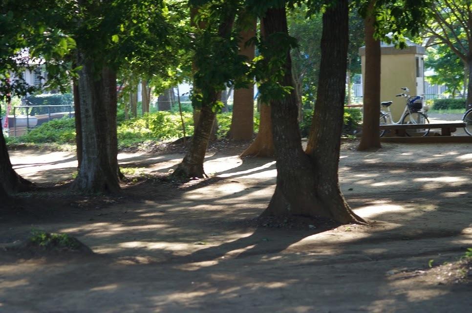 近くの公園_e0117266_04135504.jpg