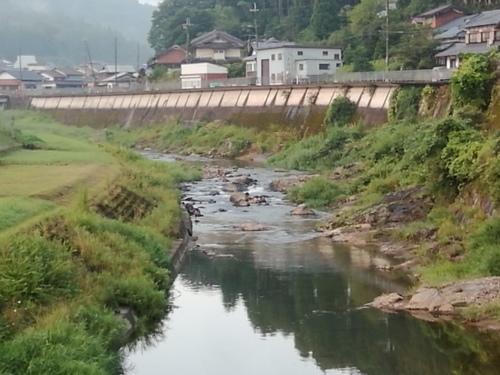 2020/8/26     水位観測  (槻の木橋より)_b0111189_05593861.jpg
