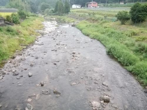 2020/8/22     水位観測  (槻の木橋より)_b0111189_06015557.jpg